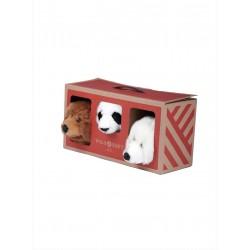 Bear Box Testa Piccola - Wild & Soft