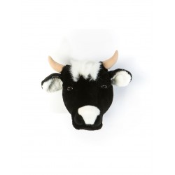 HEAD COW DAISY (MUCCA)